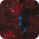 NGC 6914 Reflection Nebula,                                Jerry Macon