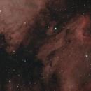 Pelican & North American Nebula,                                markfeastman