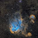 The Running Chicken Nebula,                                Chris Parfett @astro_addiction