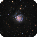 M101 LRGB by Insight Observatory - To my mom,                                Daniel Nobre