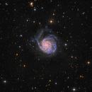 M101 LRGB by Insight Observatory - To my mom,                                Daniel Nobre