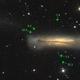 Leo Triplet - M65, M66, NGC 3628,                                Siegfried