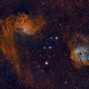 Flaming Star and Tadpoles NB+RGB,                                John Willis