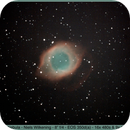 IC 7293 - Helix Nebula,                                Niels Wilkening
