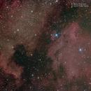 Mosaico NGC 7000 -  IC 5070,                                Maura Ingrosso