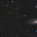 M 106 e dintorni.,                                GALASSIA 60