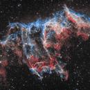IC 1340 Bat Nebula,                                Enrique Arce