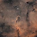 IC1396 bicolor,                                Jesus Magdalena