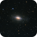 NGC 3521—the Bubble Galaxy,                                Xin Xie