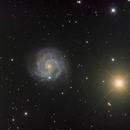 NGC 3184,                                Colin McGill