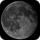 Full moon with real coloring mosaic,                                Lucca Schwingel Viola