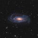NGC 5033 (UGC 8307, MCG 6-29-62, ZWG 189.43, IRAS13111+3651, PGC 45948),                                Boris US5WU