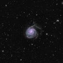 M101 - Pinwheel Galaxy LRGBHOO - QHY600 - Esprit 150,                                Eric Walden