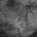 IC1396 Elephant's Trunk neb.,                                Juan José Picón