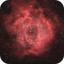 Rosette Nebula HOO,                                Jason Doyle Sr