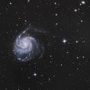 M101 Pinwheel Galaxy,                                Nightsky_NL