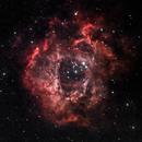Nébuleuse de la rosette NGC2244,                                william lequin