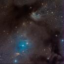IC 2631,                                Miles Zhou