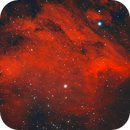 Pelican Nebula,                                Luigi Ghilardi