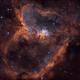 IC1805 Heart Nebula,                                Derek Foster