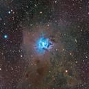 C4 - Iris Nebula,                                Tim Hutchison