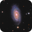 The Draco Trio - NGC 5985, 5981, 5982,                                Hunter Harling