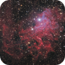 Flaming Star Nebula,                                Morris Yoder
