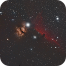 IC434/NGC2023/NGC2024,                                Chris Nowland