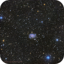 NGC 2835,                                Geoff