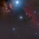 IC 434, B 33, NGC 2024,                                Joerg Meier