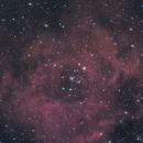 Rosette Nebula,                                Lee Morgan