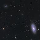 Galaxy NGC 3953. With friends,                                Simas Šatkauskas