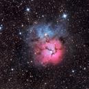 M20 - The Trifid Nebula,                                Michel Makhlouta