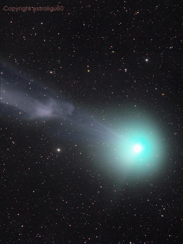 disconnessione della coda di ioni della cometa C/2014 Q2 Lovejoy del 08/01/15,                                Rolando Ligustri