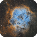 Rosette Nebula (Narrowband Hubble Palette),                                Diego Cartes