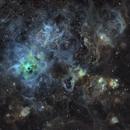 NGC 2070 narrowband,                                Martin Williams