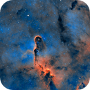 The 20 light-year long Elephant Trunk Nebula,                                Andynowlen@gmail.com