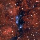 NGC6914,                                Åke Liljenberg