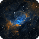NGC7635 Bubble Nebula SHO,                                Alex Bekesy