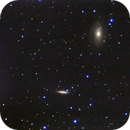 M81 and M82,                                Bobby Magee