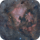 NGC 7000 from a Bortle 7 sky,                                Andre van der Hoeven
