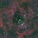 NGC2244 Rosetten Nebel,                                Pierre Gatzki