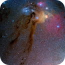 Rho Ophiuchi (with bonus Comet),                                Peter Pat