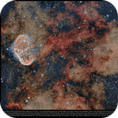 Crescent Nebula (left) + Soap Bubble Nebula Right from the center),                                Andre van Zegveld