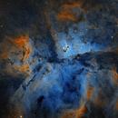 NGC 3372,                                Rodrigo González...