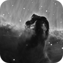 The Horsehead Nebula,                                Don Curry