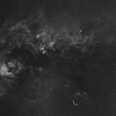Cygnus's nebulas,                                Marek Smiatacz