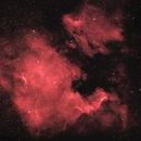 NGC 7000 - IC 5070,                                Sébastien Kesteloot