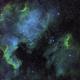 Pelican and North America Nebulae,                                DustSpeakers