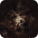 NGC2070 Tarantola,                                Manuel Orsatti